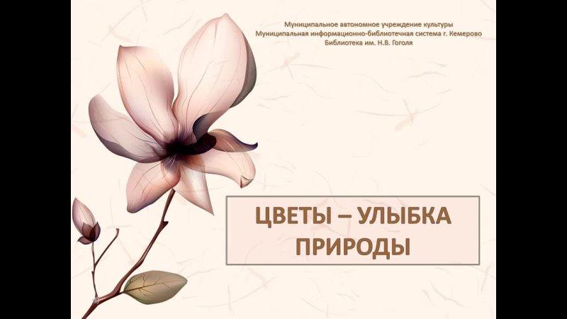 Видео от Президентская Библиотека МИБС Кемерово