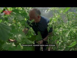Видео от Игоря Додона