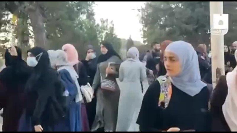 La chiourme juive s'en prend à des femmes palestiniennes à al Aqsa