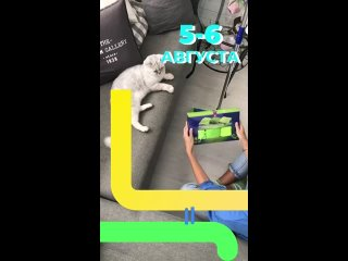 GREEN_WAY ЭКО-МАРКЕТ ДЛЯ ДОМА И АВТО В ТВЕРИ kullanıcısından video