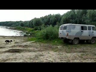 Видео от Александра Крысанова