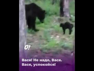 Видео от О, Сургут!