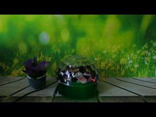 Video by PayMarket | Интернет-магазин | Донецк | ДНР