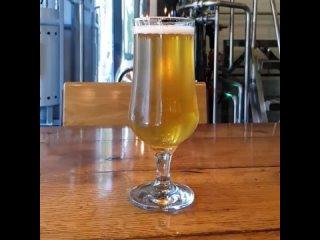 Пиво от Jolly Molly