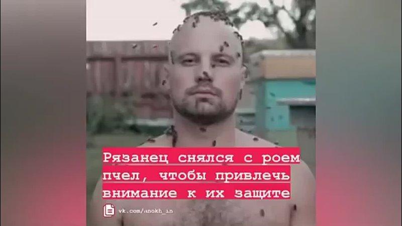 🐝 Рязанец Дмитрий Анохин опубликовал видео на котором его тело покрыто пчелами Ролик размещен в соцсети ВКонтакте По словам