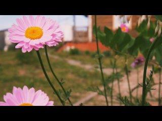Vídeo de Elena Korotaeva