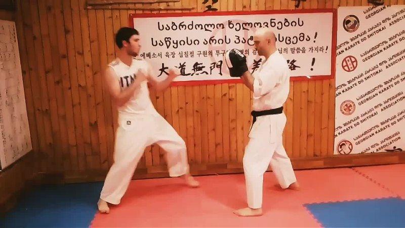 Misha Kodua Удары руками и ногами