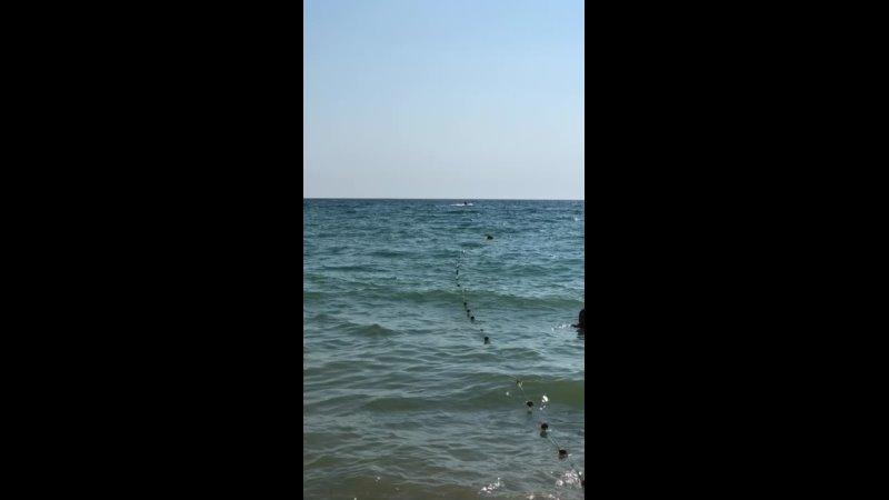 Видео от Виктора Манорика