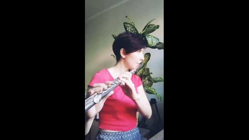 Пассаж флейта дамрава