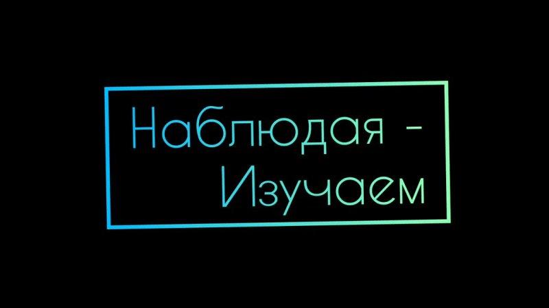 Видео от Школа 1797 Богородская