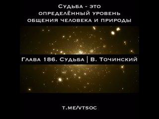 Глава 186. Судьба   Виталий Точинский
