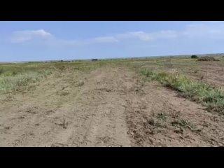 Видео от Евгении Сиан