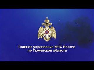 Video by Тюменская область сегодня
