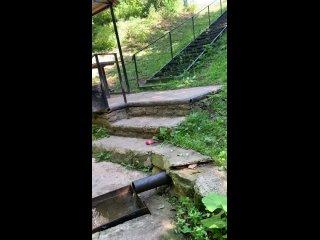 Видео от Райсы Сахаувой