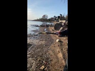 Videó: Золотые сердца ТЕРЕМКА