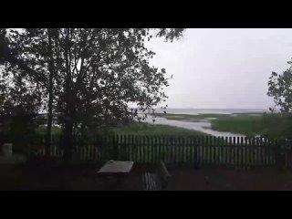 Video by Liudmila Belochitskaia