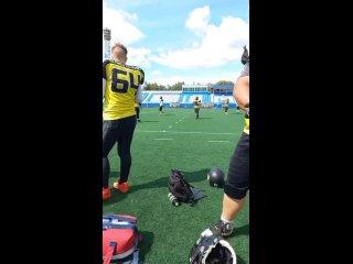 Video von Wladimir Berestnew