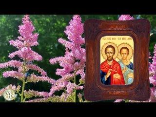 14 июля день Кузьмы и Демьяна. Кузьминки летние. Что нельзя делать. Народные традиции и приметы.