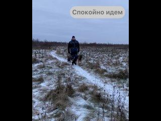 Vasili Sivanovtan video