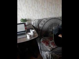 Видео от Ольги Плотниковой