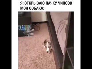 Video by Моменты l Екатеринбург