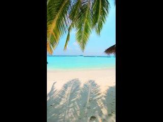 🇲🇻 Курортный отель Kurumba Maldives расположен на частном тропическом острове атолла Северный Мале, в окружении прекрасных пляже