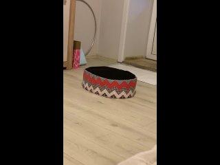 Video by Oksana Mamedova