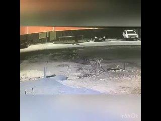 Video by Мой Тамбов
