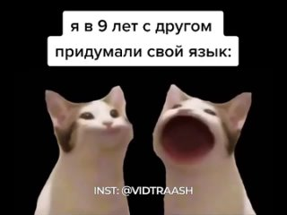 ВИДЕО ДОЛБОЕБА