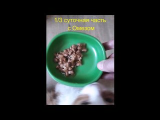 Nataliya Işinatan video