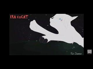 """Обязательно посмотрите трогательную историю из,, Коты воители""""."""