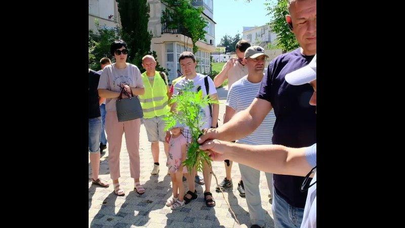 ⚡Вооружившись перчатками, на улицы вышли общественники и представителей управляющих компаний на борьбу с амброзией.  Смотрите видео????????