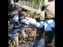 Обращения от подписчиков ✔️1️⃣ Ямочный ремонт на ул Ермолова.2️⃣ Ессентуки Октябрьская дом 422 , кстати в одном здании с «Ма