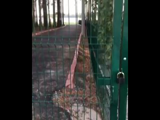 Видео от ТопТюмень   Типичная Тюмень