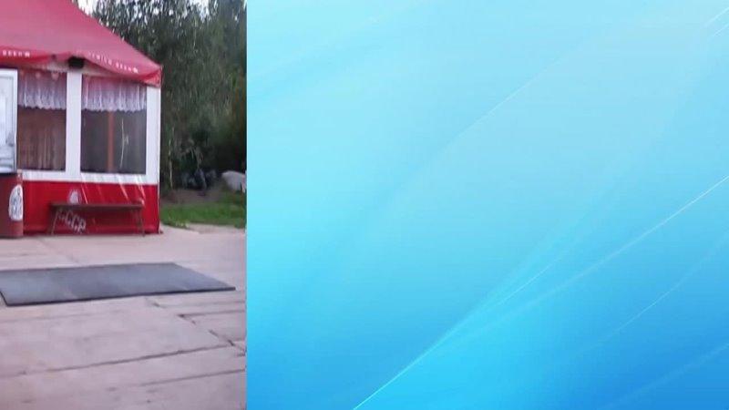 Видео от Андрея Лосюка