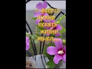Video by Olga Stefanchuk