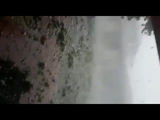 来自СЛУЖБА НОВОСТЕЙ 24 | ГЕЙ ЛЕСБИ БИ ТРАНС的视频