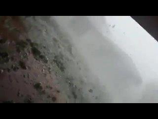 Video by СЛУЖБА НОВОСТЕЙ 24 | ГЕЙ ЛЕСБИ БИ ТРАНС