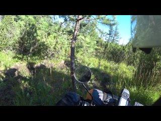 Video by Alexander Pazukha