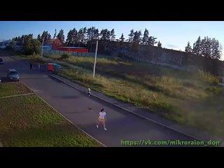 Video by (АС) Атакующие собаки