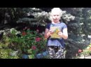 Видео от Александровскаи Сельской-Библиотеки