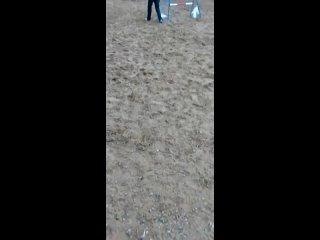"Видео от Питомник ам. питбулей  ""PIT MUST SURVIVЕ"""