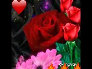 Video by Adilbek Kurbanaliev