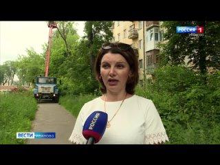 В Иванове снесут около 250 аварийных деревьев