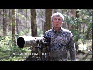 Video by Konstantin Shatenev