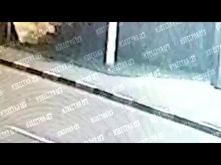 Видео от ДТП и ЧП   Москва и МО   МСК