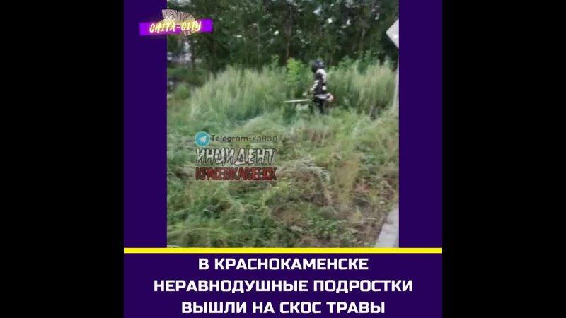 В Краснокаменске неравнодушные подростки вышли на скос травы