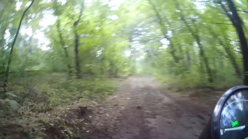 Видео от Nikus Репина