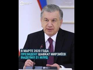 Как в Узбекистане распилили миллионы на борьбу с COVID-19