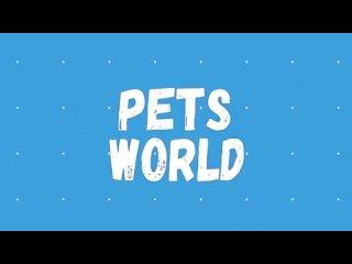 Видео от Петра Цурикова
